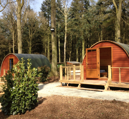 Glamping at Oaker Wood Leisure